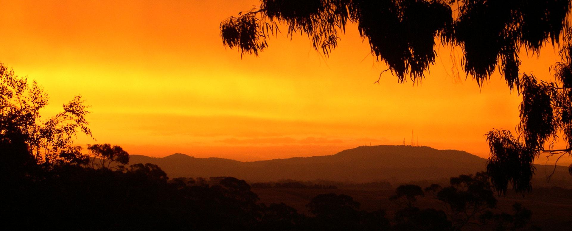Patina Sunset